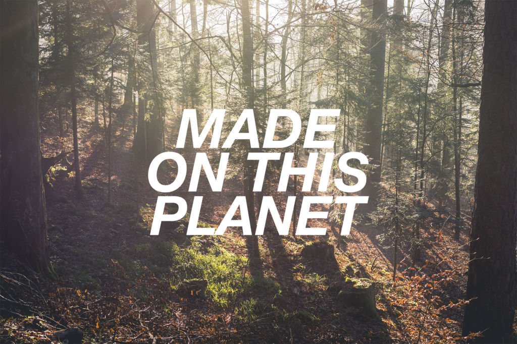 Sonnenstrahlen im Schwarzwald in Enzklösterle / Made On This Planet